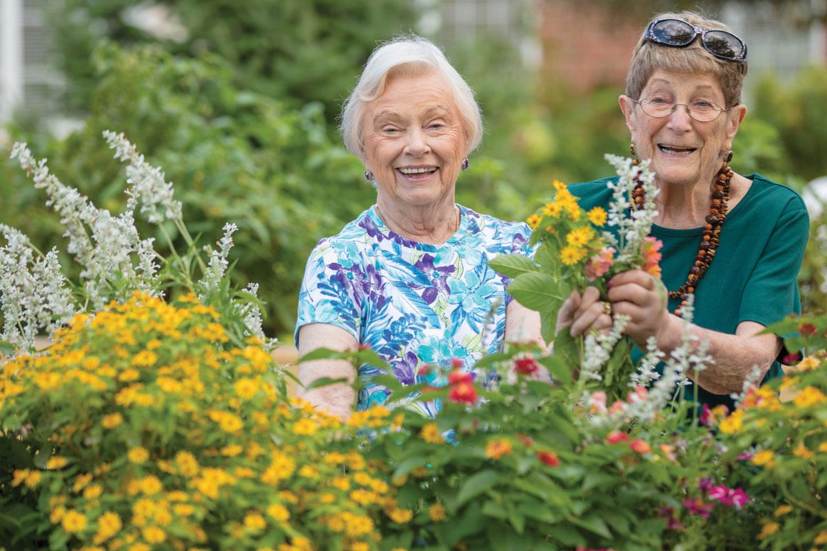 two senior women picking flowers outside